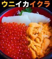 海鮮丼 ウニ イカ イクラ セット
